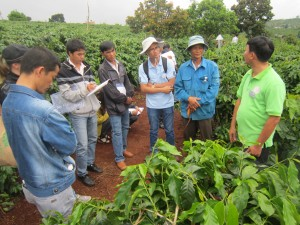 Farmer Field School on Climate Change adaptation and mitigation, Vietnam