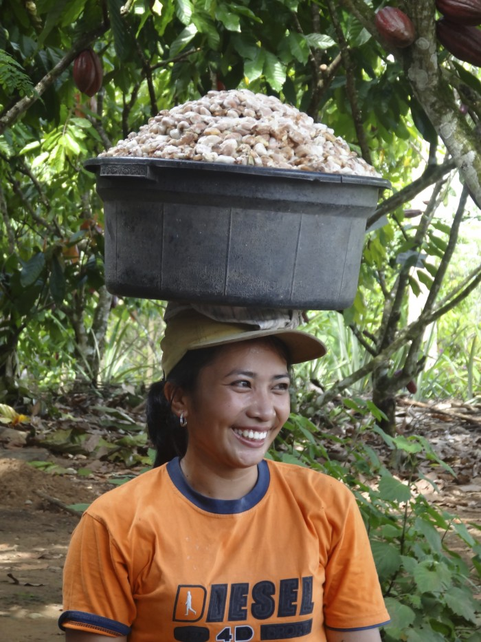 Female cocoa farmer in Indonesia